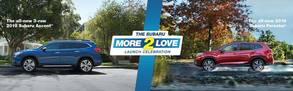Subaru More2Love Launch Celebration